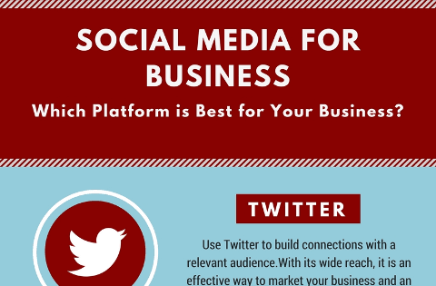 Social Media for Business (Infographic)